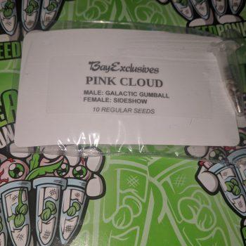 PINK CLOUD strain