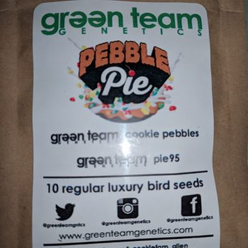 PEBBLE PIE strain