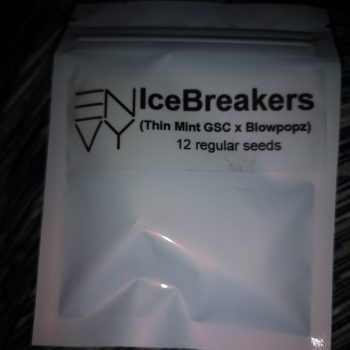 ice breakers envy heavily connected seed bank