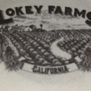 Lokey Farms