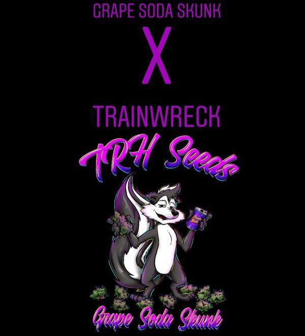 Train wreck x grape soda skunk