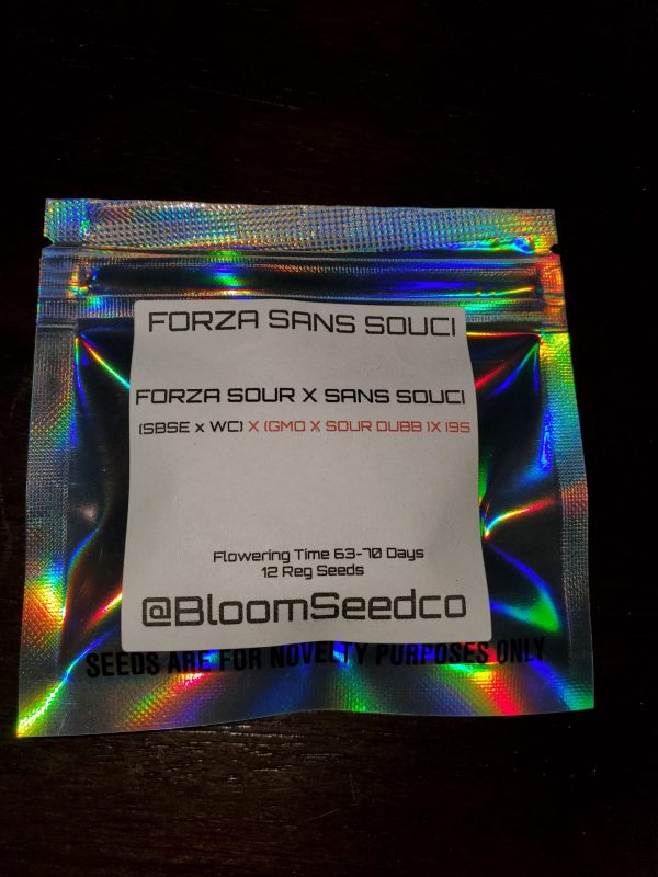 Forza Sans Succi by BLOOM SEED COMPANY