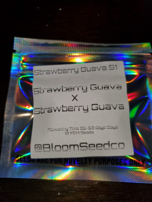 strawberry guava s1 By BLOOM SEED COMPANY