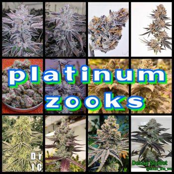 Platinum Zooks