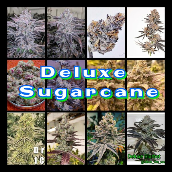 Deluxe Sugarcane