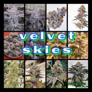Velvet Skies