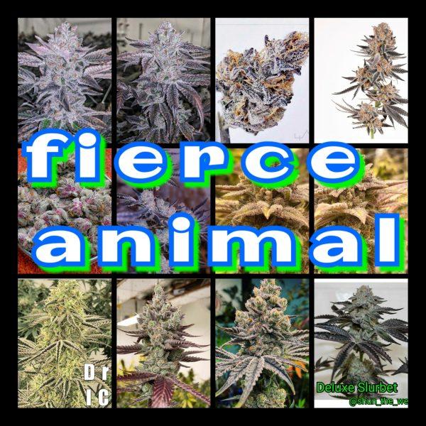 Fierce Animal Strain