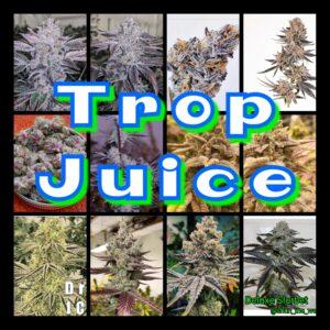 Trop Juice Strain