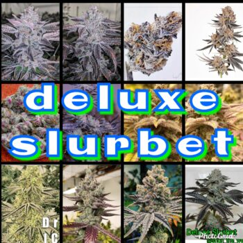 Deluxe Slurbet