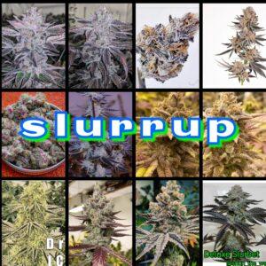 Slurrup