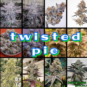 Twisted Pie
