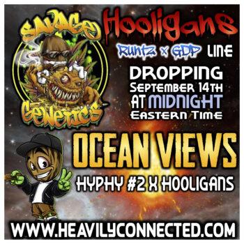 ocean views Strain