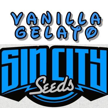 Vanilla Gelato Strain