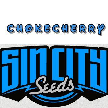 ChokeCherry Strain