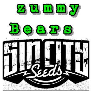 zummy bears strain