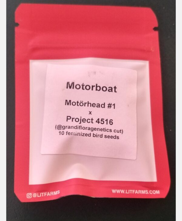 Motorboat- Seeds- By=Lit-Farms