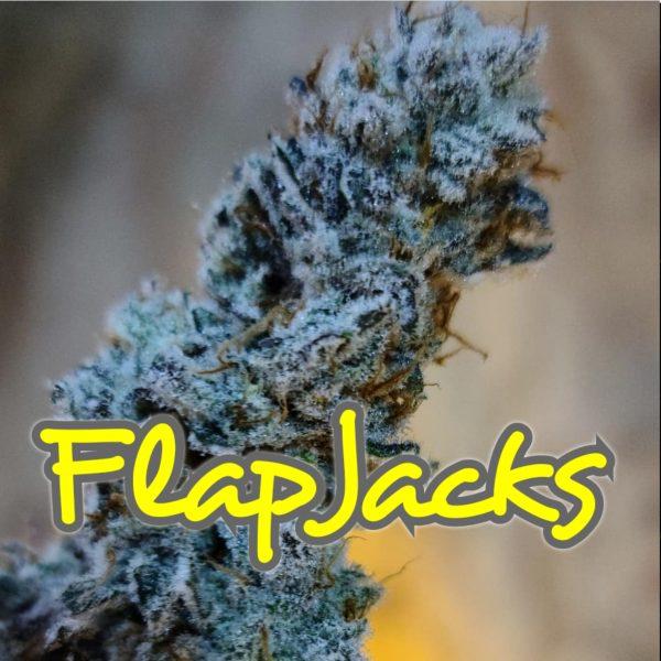 FlapJacks Strain Inhouse Genetics