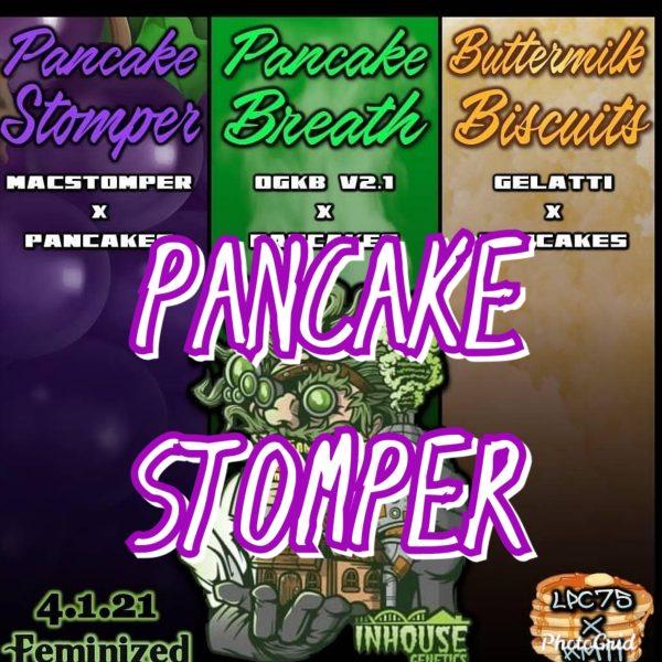 Pancake Stomper Inhouse Genetics