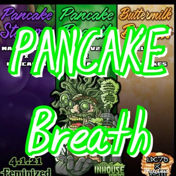 Pancake Breath Inhouse Genetics