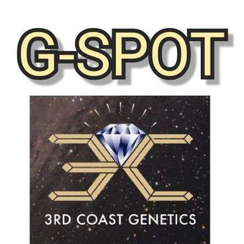 G-SPOT - 3RD COAST GENETICS