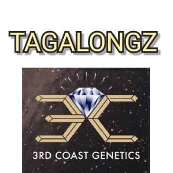 TAGALONGZ - 3RD COAST GENETICS