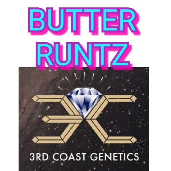 BUTTER RUNTZ - 3RD COAST GENETICS