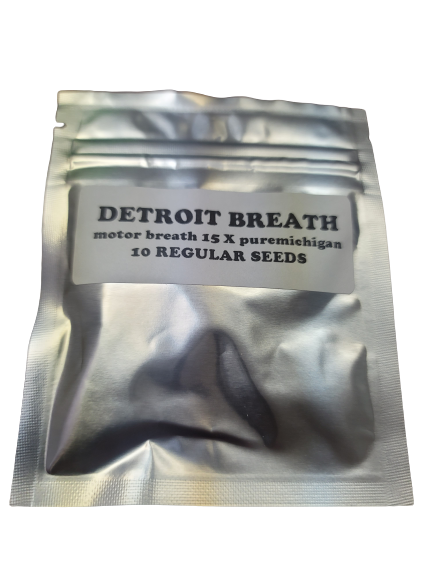 Detroit Breath 3rd coast genetics