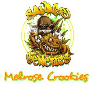 Melrose Crookies Savage Genetics